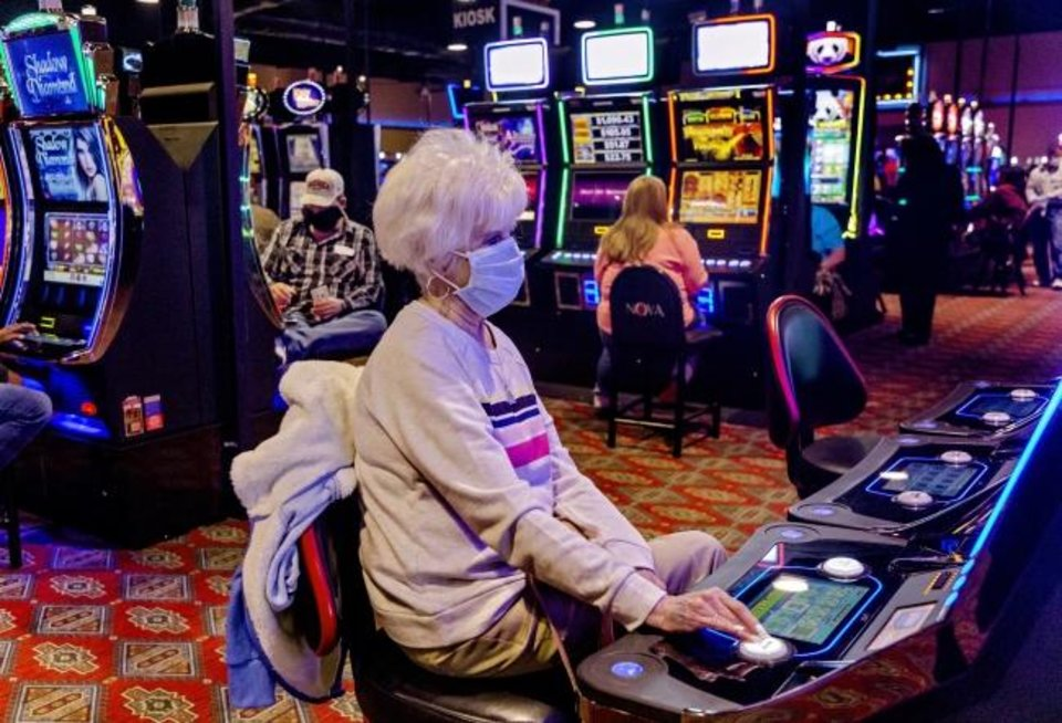 Canine and Online Casino